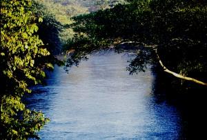 Rio Meia Ponte, setor Balneário Meia Ponte, bairro da região Norte de Goiânia. Foto: João Faria/ONG Rios Goianos.