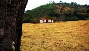 Fazenda velha e abandonada, uma cena comum nas localidades rurais do Brasil. E com isso cultivam a fama de serem mal assombradas e locais de energia ruis! Foto: João Faria/ONG Rios Goianos.