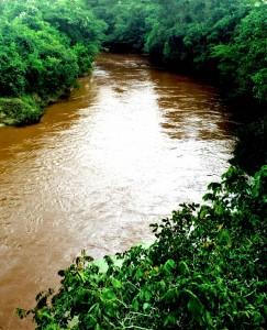 Rio dos Bois Povoado de Gercinápolis Varjão Goiás Leito do rio, visão linda! 20 Foto João Faria 25 02 2017