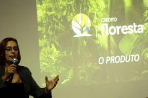 Tesouro Verde Maria Tereza Umbelino 9 Fotos João Faria 01 09 2017