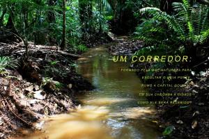 1 Queda d agua nascente do Rio Meia Ponte Itauçu Goias 10 Foto Joao Faria ONG Rios Goianos